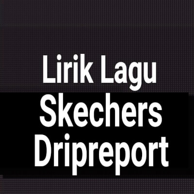 Dripreport skechers